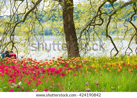 Beautiful garden with old trees and spring flowers and a couple sitting by lake
