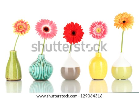 Beautiful Gerber flowers isolated on white - stock photo