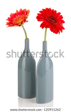 Beautiful gerber in vase isolated on white - stock photo