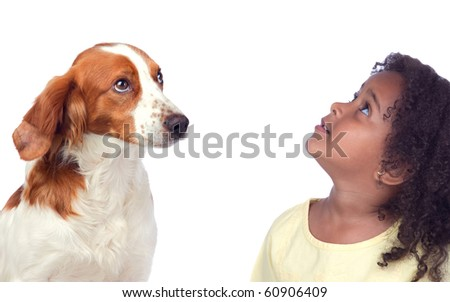 Beautiful girl and her dog looking up isolated on white background - stock photo