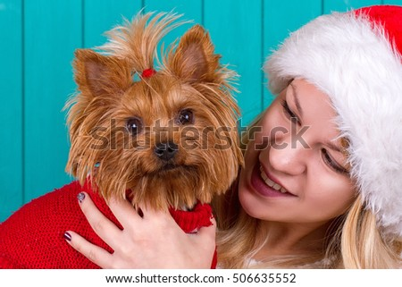 Beautiful girl in santa cap with yorkie dog in red sweater