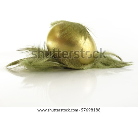 Beautiful gold nest egg in a feathered nest - stock photo