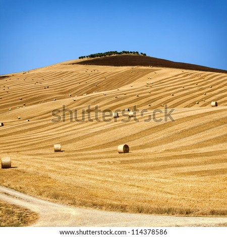 Beautiful golden hay bales on the field as background - stock photo