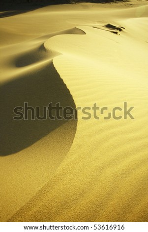 beautiful golden sand dunes on lovely fraser Island - stock photo
