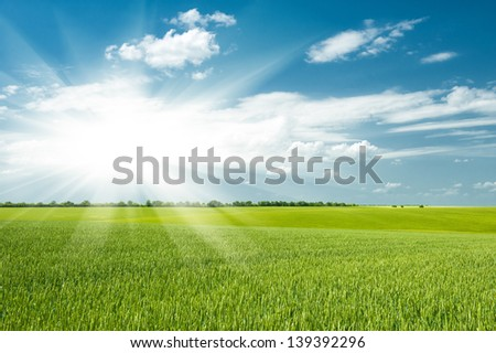 beautiful green field and clouds - stock photo