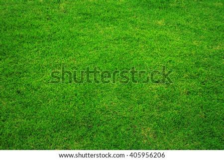 Beautiful green grass texture of football stadium. - stock photo