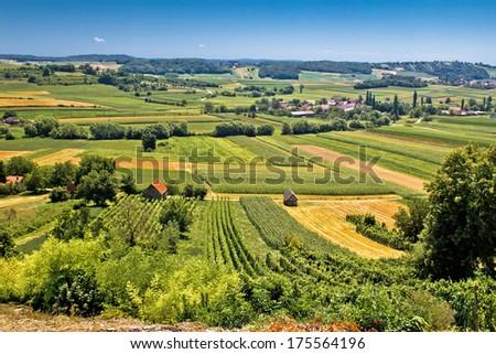 Beautiful green landscape in Kalnik vineyard area, Prigorje region, Croatia - stock photo