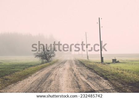 beautiful green meadow in heavy mist with lonely trees. Vintage photography effect. - stock photo