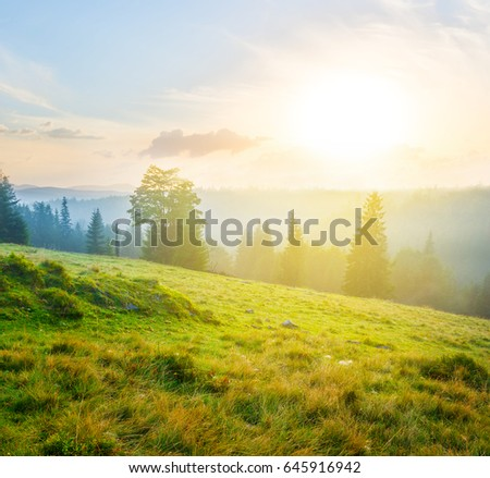 beautiful green mountain scene at the sunset
