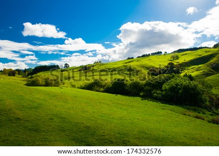 Beautiful green rolling hills of Southern New Zealand at dusk, Canterbury - stock photo
