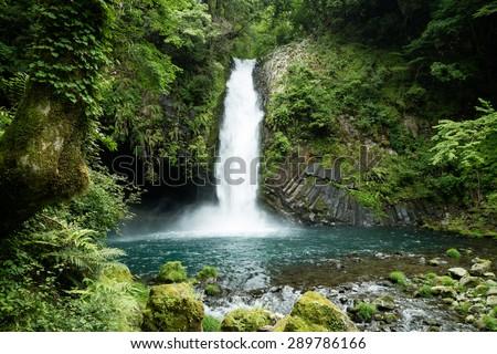 Beautiful green waterfall in the lush rainforest of Minami Izu peninsula in Japan - stock photo