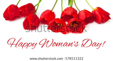 Beautiful greeting Card with text Happy Women's Day for International Women's Day, March 8. Red Tulips Flowers lie on white background. Wide Horizontal Image