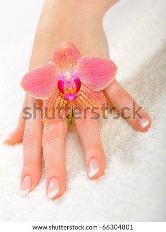 beautiful hand with perfect french manicure on treated nails - stock photo
