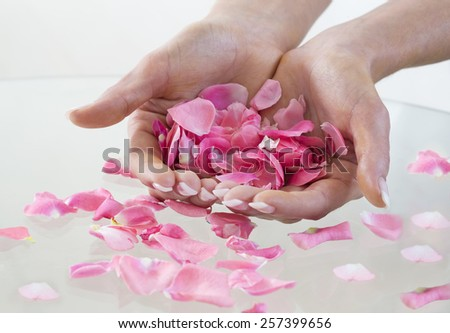 Beautiful hand with perfect nail French manicure and rose petals. - stock photo