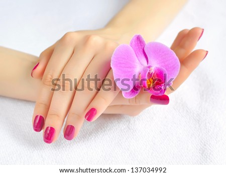 Beautiful hands with manicure and purple orchid flower - stock photo
