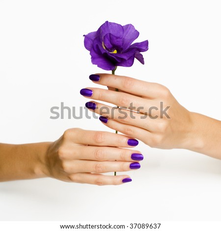 Beautiful hands with manicure holding purple flower - stock photo