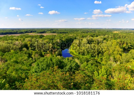 Beautiful harmonious nature, blue clouds and sky, chic green forest, river. Summer landscape. Idyll, trees