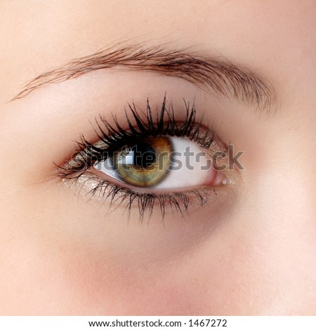 beautiful hazel eye - stock photo