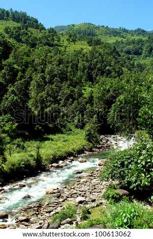 Beautiful himalayan forest landscape, trek to Annapurna Base Camp in Nepal - stock photo