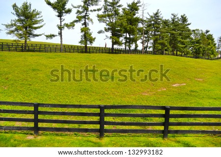 Beautiful Horse Farm in Lexington, Kentucky