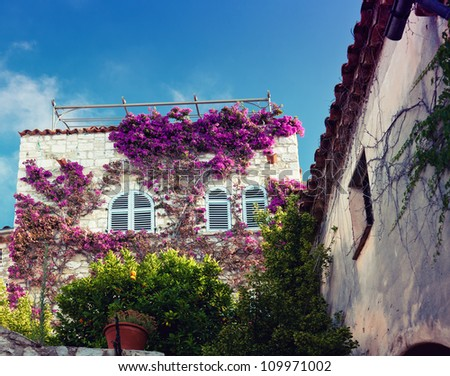 beautiful house facade in France - stock photo