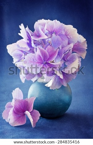 beautiful hydrangea flowers in a vase on a blue background .  - stock photo