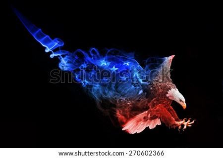 beautiful image of a bold eagle.. animal kingdom. flying bird. wildlife picture. great  tattoo. american flag. stars and stripes. amazing american symbol. - stock photo