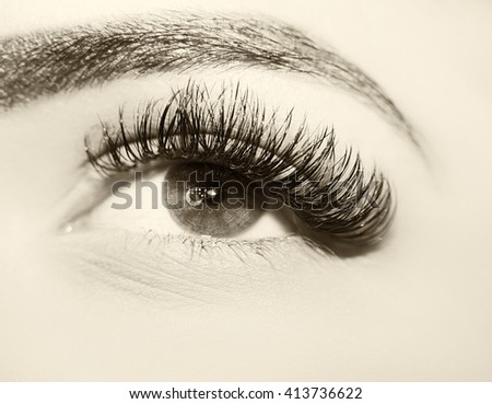 Beautiful insightful look women's vintage eyes.  eyelash extension