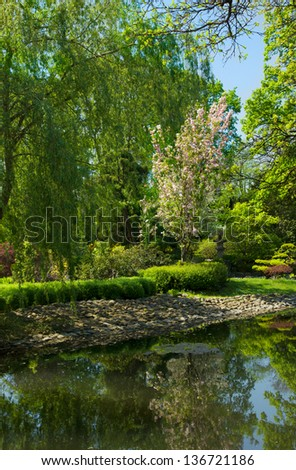 beautiful japan garden in spring, Wroclaw, Poland