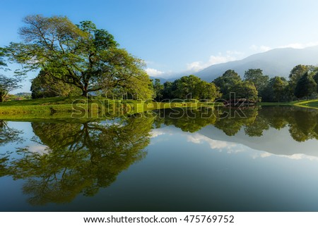 Beautiful Lake Garden with Reflection