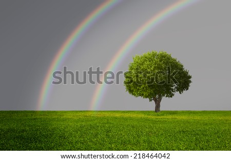 beautiful landscape and lone tree with rainbow - stock photo