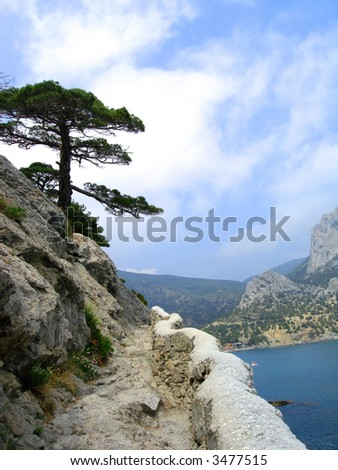 beautiful landscape (big mountain, tree, blue sea and sky with clouds) - stock photo