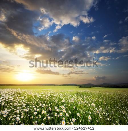 Beautiful landscape. Composition of nature. - stock photo