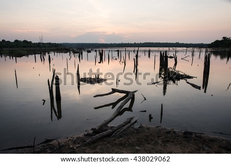Beautiful landscape image with dead trees silhouette and reflection  at sunset over lake - stock photo
