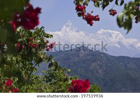 Beautiful landscape in Himalays, Annapurna region, Nepal, Pokhara and Beautiful pink Hibiscus flower - stock photo