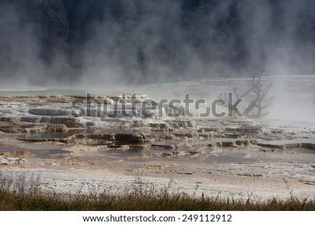 Beautiful landscape in Yellowstone National Park, Wyoming, USA. - stock photo