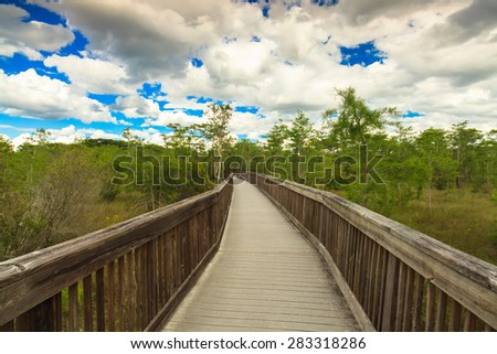 Beautiful landscape of a nature trail boardwalk in the Grand Cypress Preserve in the Florida Everglades. - stock photo