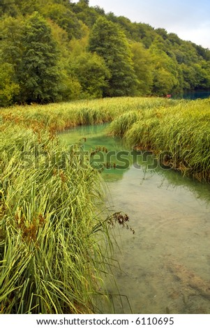 Beautiful landscape of a small river on a hot summer day