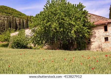 Beautiful landscape of the Valpantena Verona Italy area of famous wines and oils - stock photo