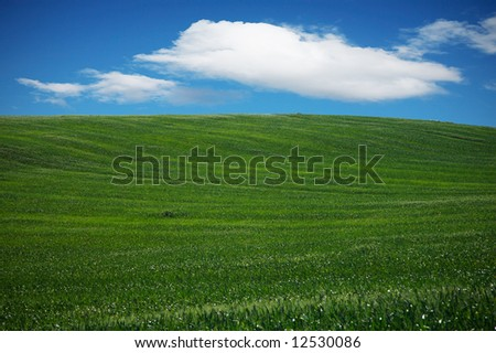 Beautiful landscape with a green field, a sky and clouds - stock photo