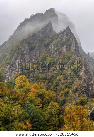 Beautiful landscape with misty mountain and colorful autumn trees