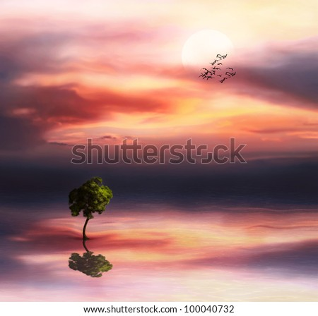 Beautiful landscape with tree on a sunset sky - stock photo