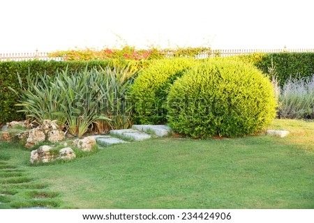 Beautiful landscaping in park - stock photo