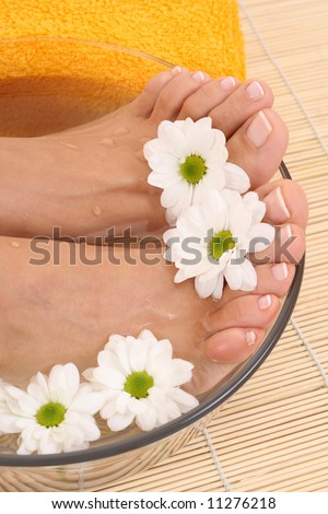 beautiful legs - beauty treatment - bowl of pure water with daisy flowers