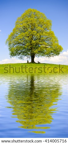 beautiful linden tree with reflection in water with waves - stock photo