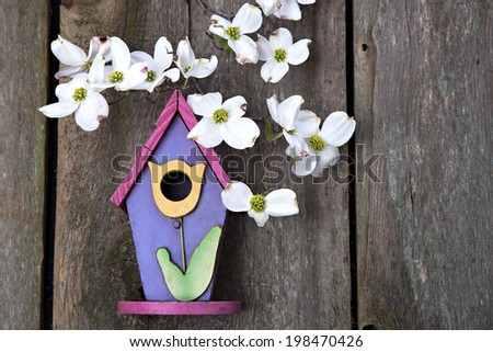 Beautiful little pink, purple and yellow birdhouse on rustic wooden fence with white Dogwood blooms  - stock photo