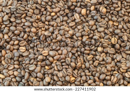beautiful macro background of coffee