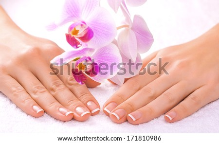 beautiful manicure on white