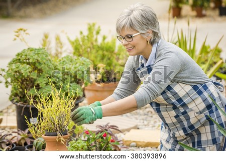 Beautiful mature woman taking care of the garden - stock photo