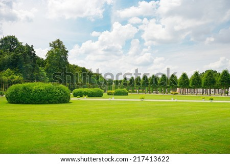 Beautiful meadow in the park                                     - stock photo